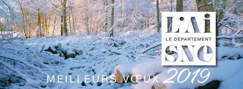 Version sous-titrée sur Aisne.com : https://www.aisne.com/…/voeux-2019-de-nicolas-fricoteaux-pr…