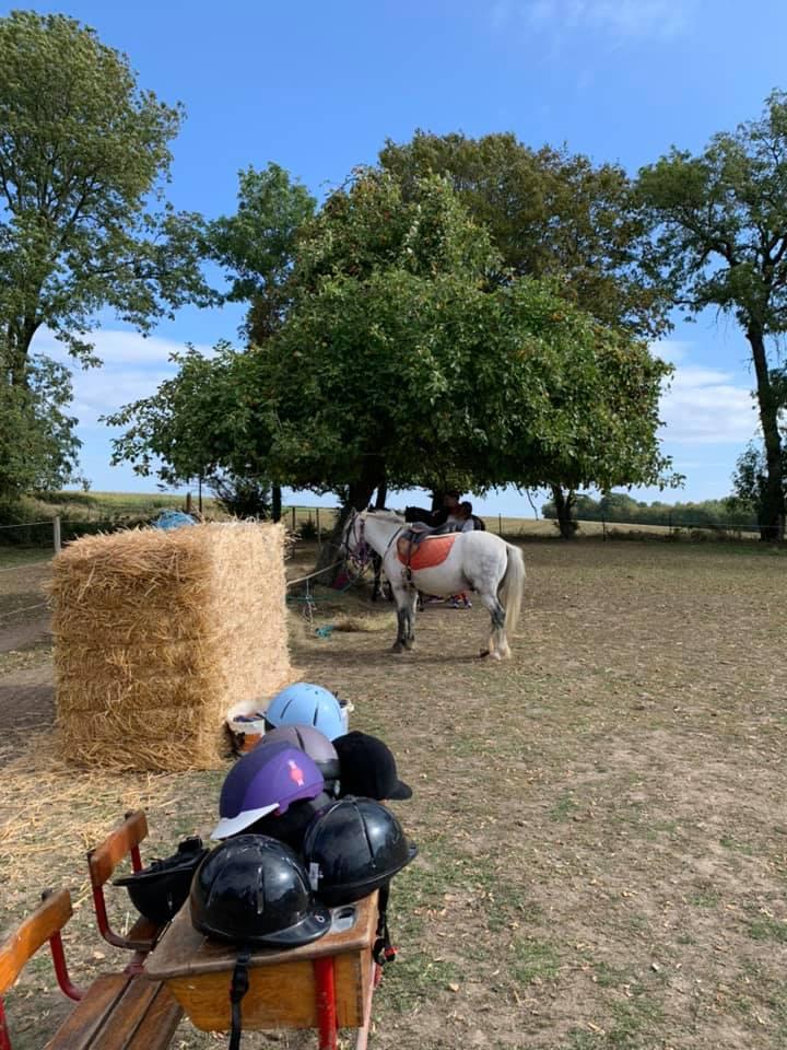 Belle journée en plein air au Relais équestre de la Ferme de Couvron à Macquigny