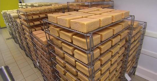 Une initiative du Conseil départemental de l'Aisne saluée par les éleveurs laitiers et les producteurs de maroilles…Soutenons la filière, mangeons du maroilles