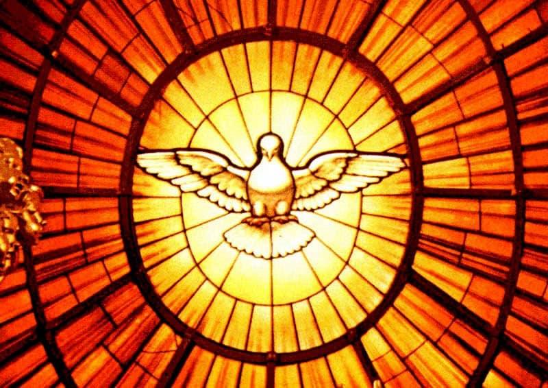 🌸 Bon week-end de la Pentecôte